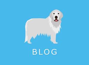 オーナー様のブログ紹介