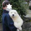 和歌山県に巣立って行きました。